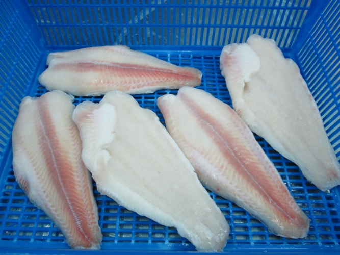 Panga fillet semi trim