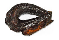 Smoked Barracuda Ring X-Dry